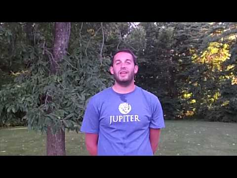Ryan Olrich–Alliance Drum and Bugle Corps