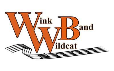 Wink High School